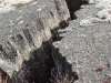 Cracked Basalt - Iceland