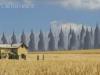 ESBs Crossing the Plains