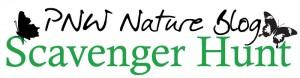 PNW-Scavenger-Hunt-Logo