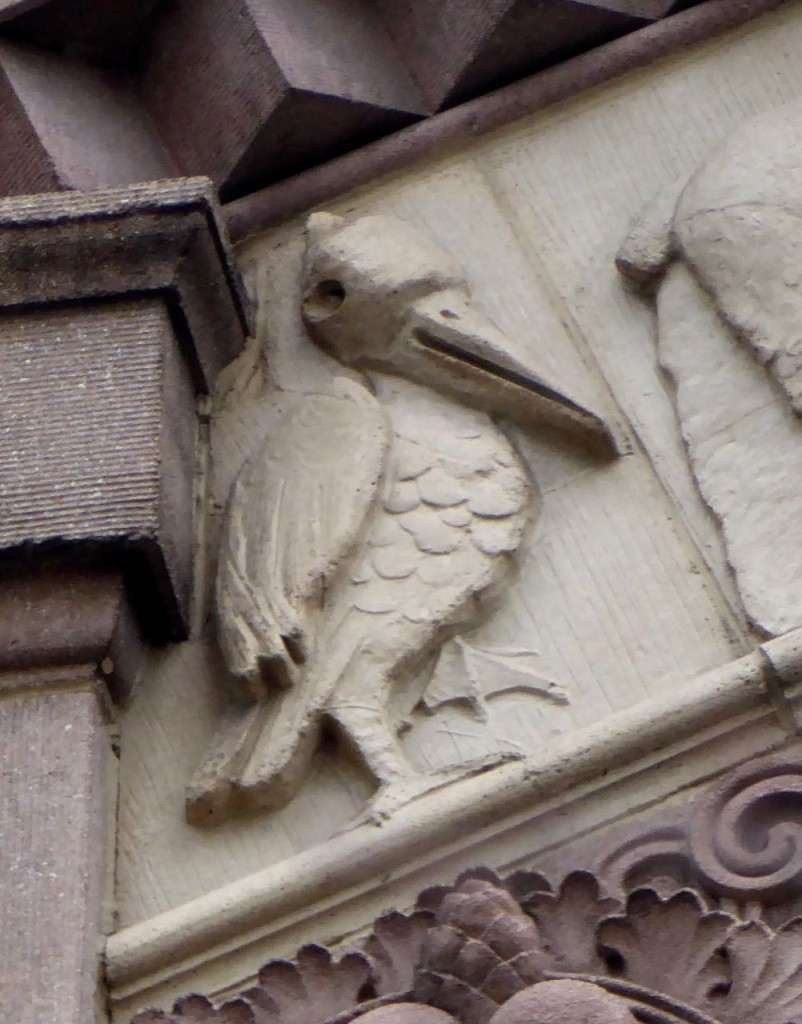Another pelican at 215 Columbia. Can also see a duck on the frieze.